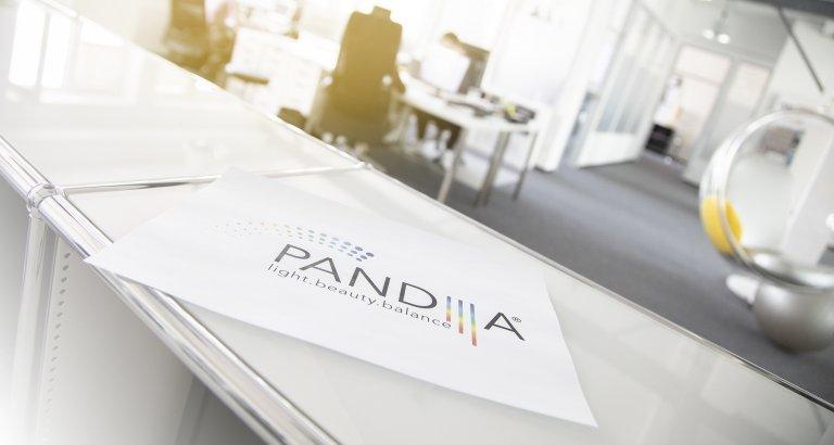 PANDIIIA® Logo Loft