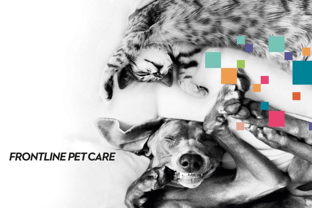 Frontline Pet Care Katze und Hund