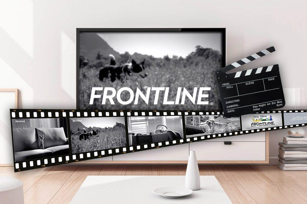 FRONTLINE TV Screen und Filmrolle