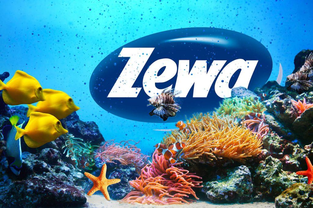 Zewa Logo Unterwasserwelt